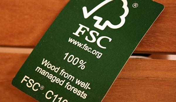 Chứng nhận rừng FSC: Cơ hội hay thách thức